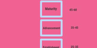 Career Stage Model